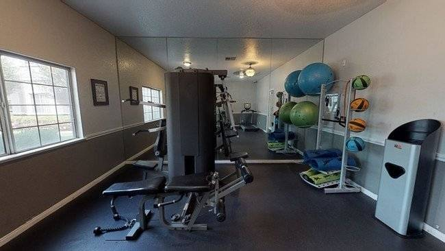 Fitness Area w/ free weights, and sauna