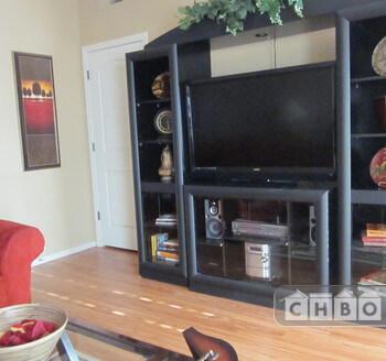 entertainment center living room