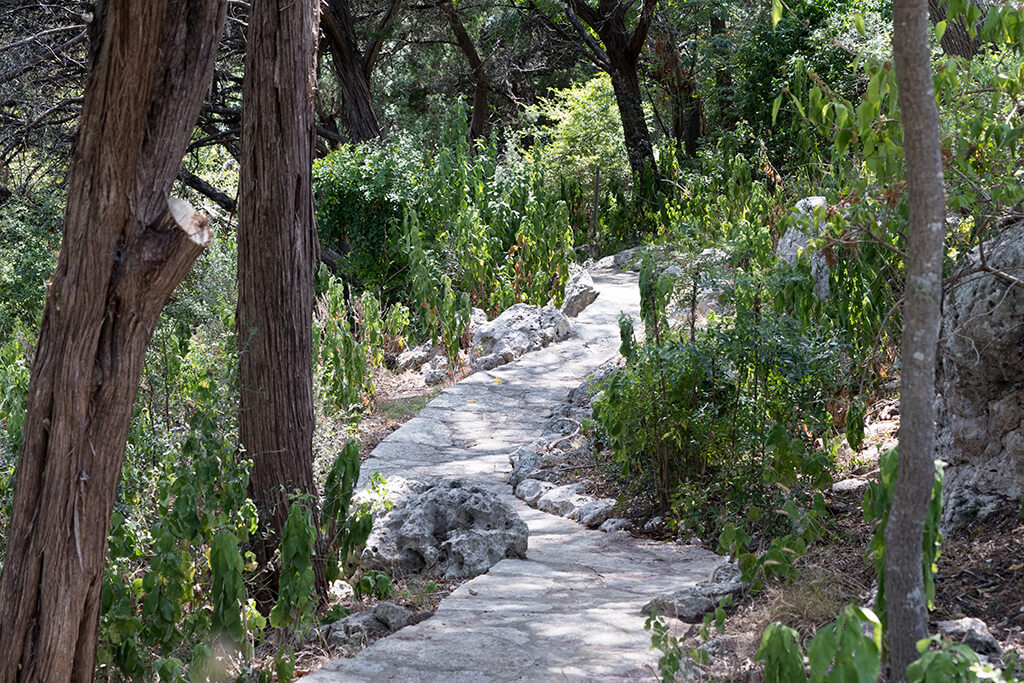 Pathway to Pond