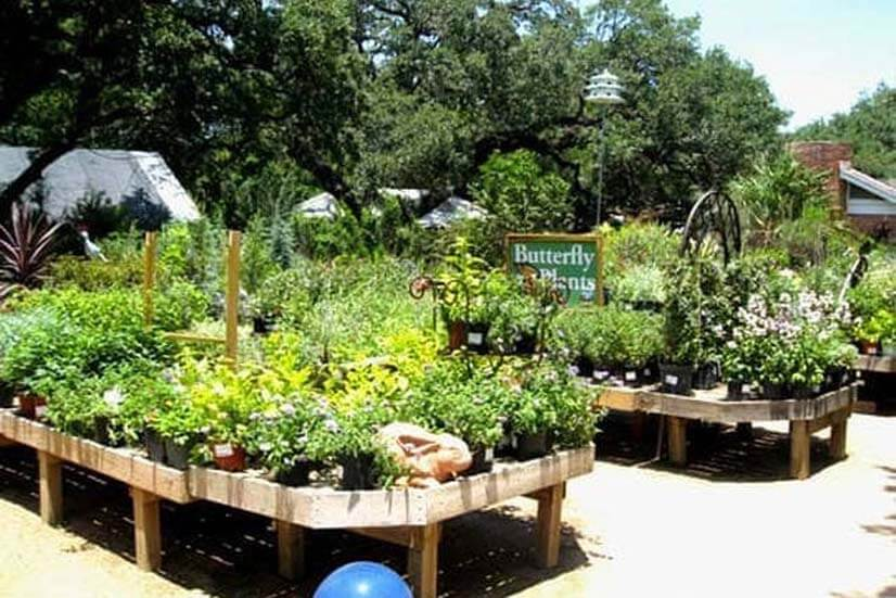 The Great Outdoors Nursery & Coffeehouse (1 mi)