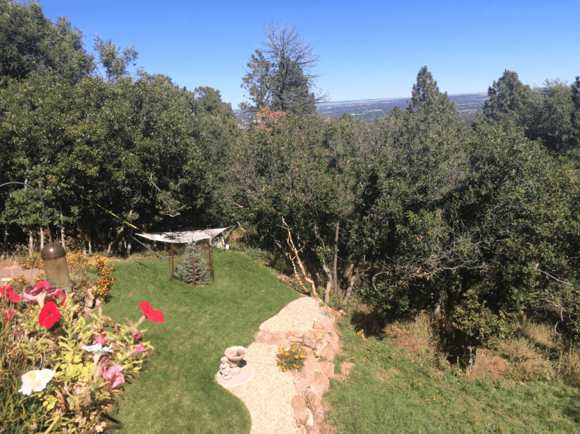 Lower Level Backyard