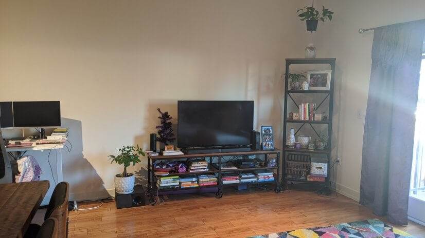 Living room (tv included)