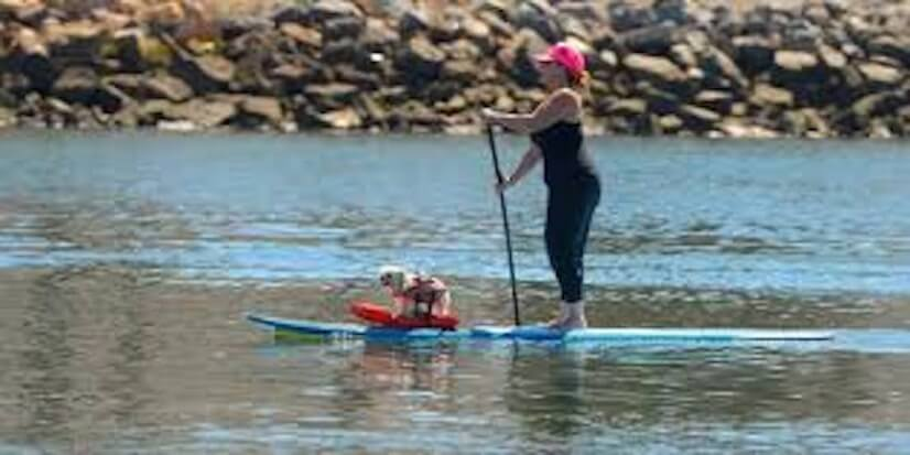 Take the Stadium out to safe paddle boarding