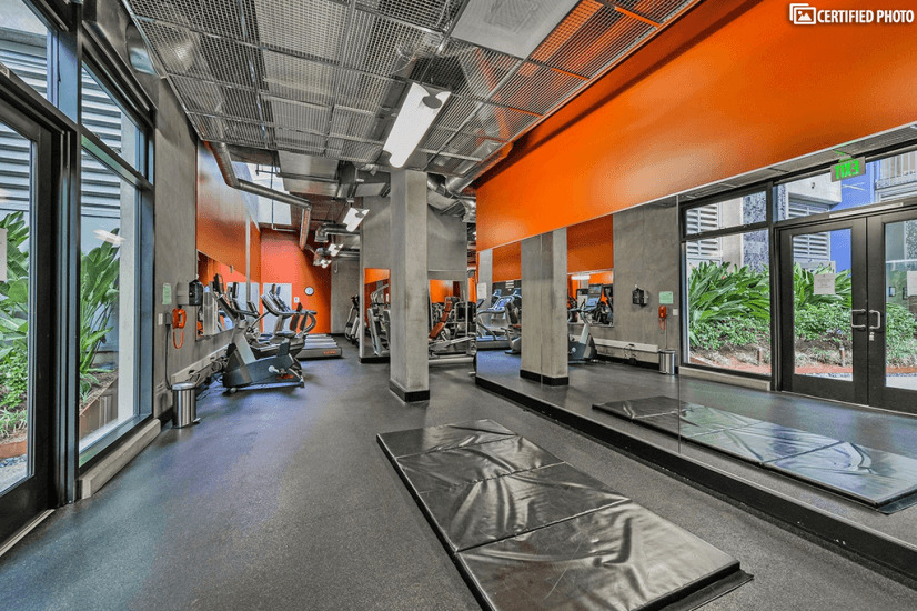 Fully equipped gym on the ground floor.
