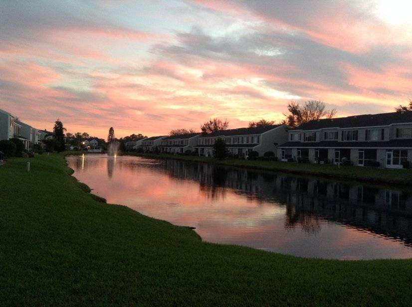 image 16 Furnished room to rent in Oldsmar, Pinellas (St. Petersburg) 2 bedroom Townhouse