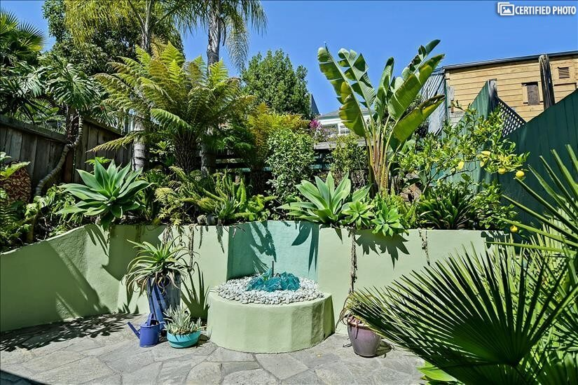 Water feature in a lush green paradise.