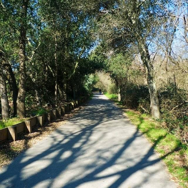 Napa River Walk