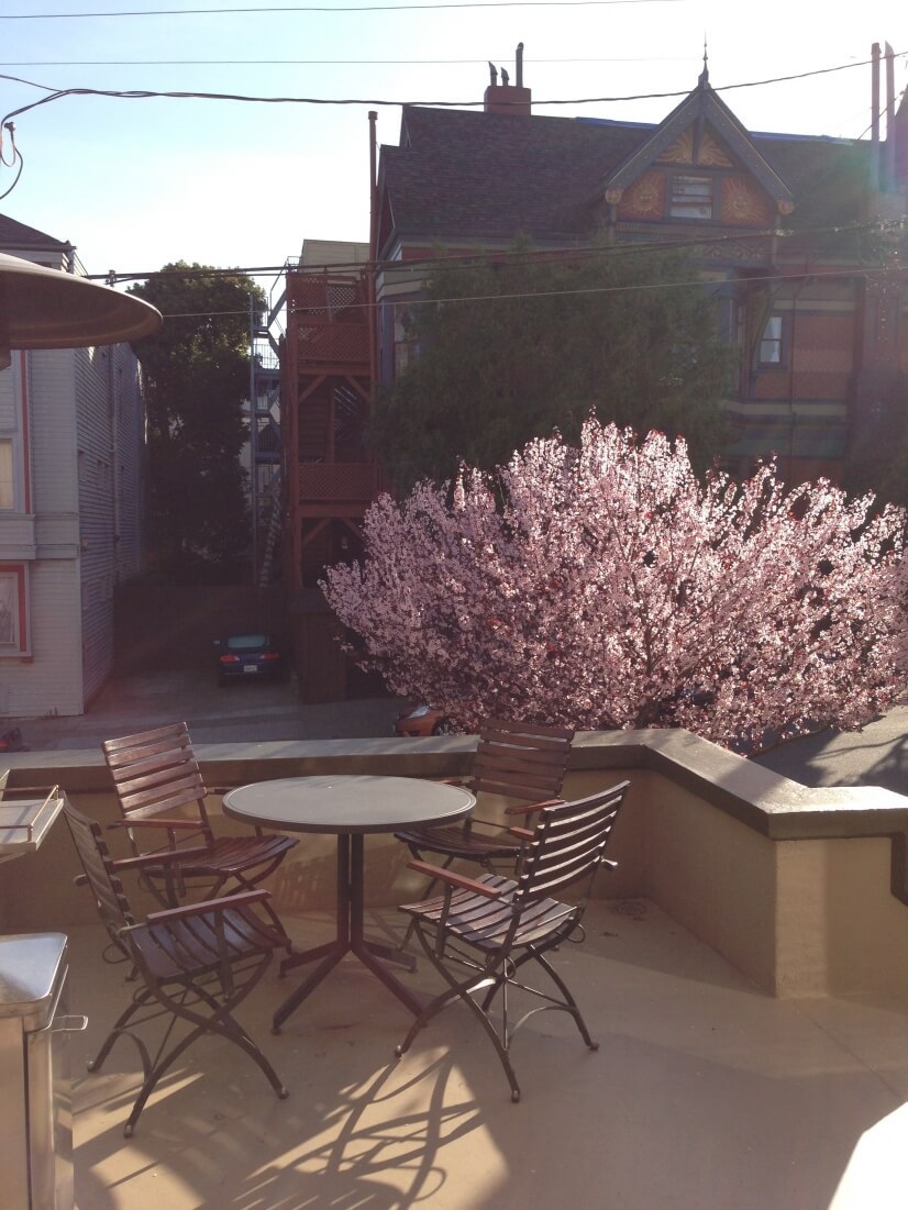 image 9 furnished 1 bedroom Townhouse for rent in Haight-Ashbury, San Francisco