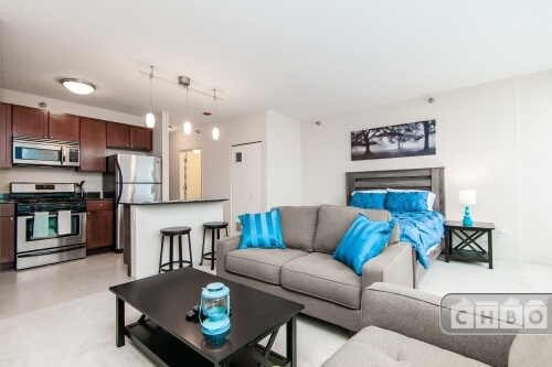 image 4 furnished Studio bedroom Townhouse for rent in Loop, Downtown