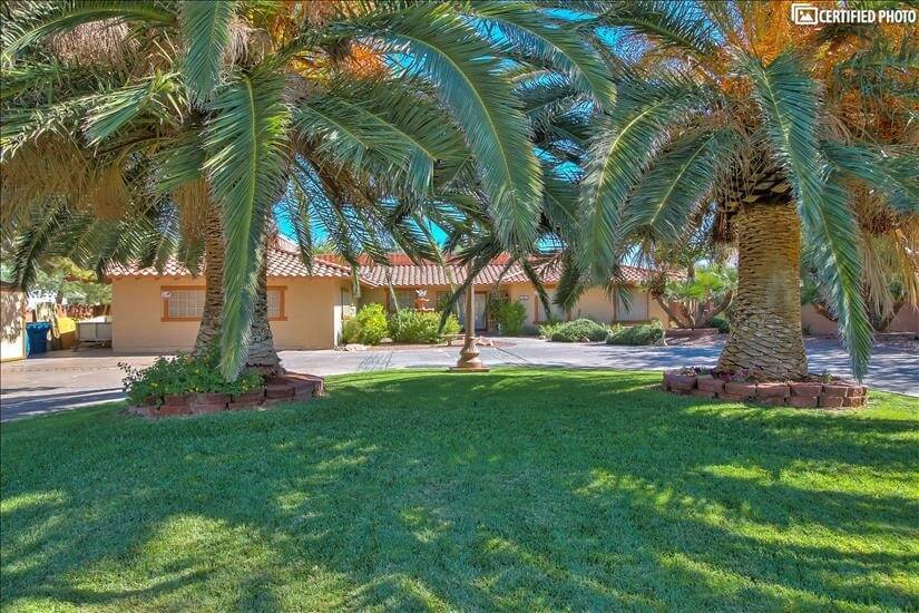Grassy front yard with 2 Royal Palms
