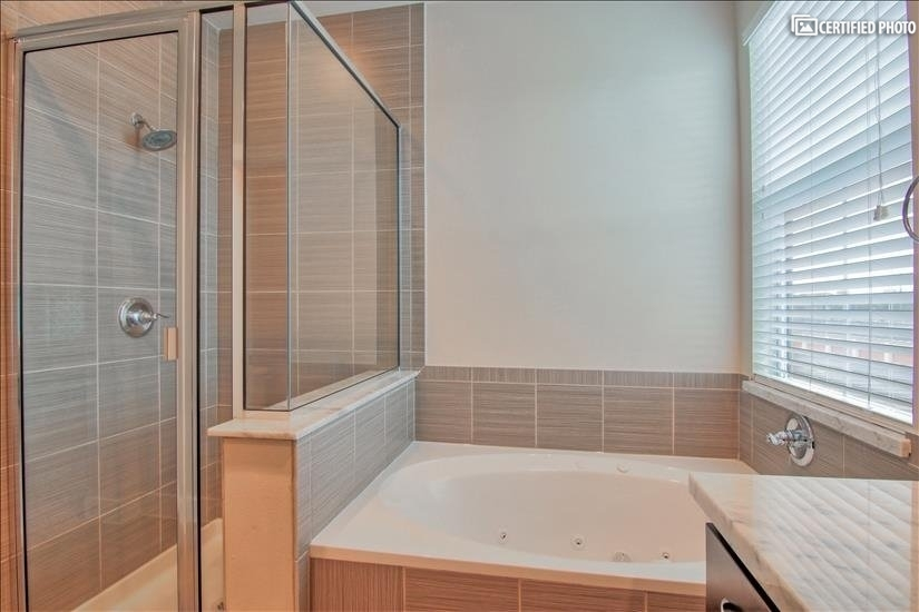 Lovely jacuzzi/hot tub and walk-in shower!