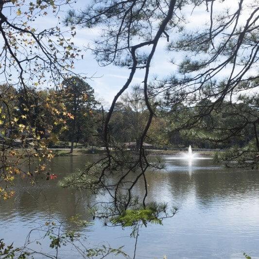 Lake Frontal Propery