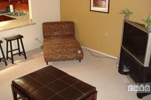 image 2 furnished 1 bedroom Townhouse for rent in Loop, Downtown