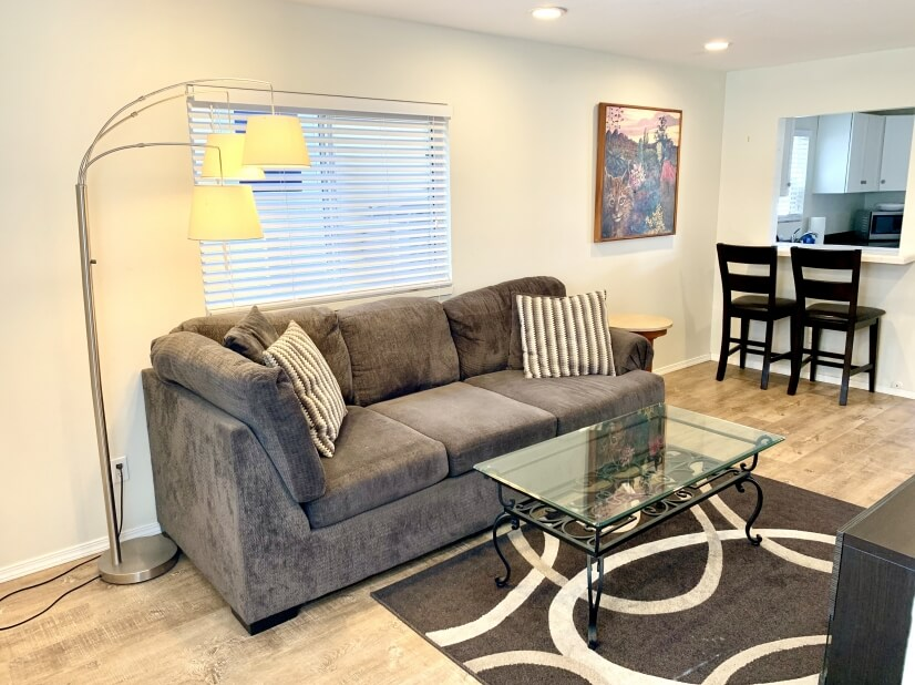 Large Sofa and Bar Counter area