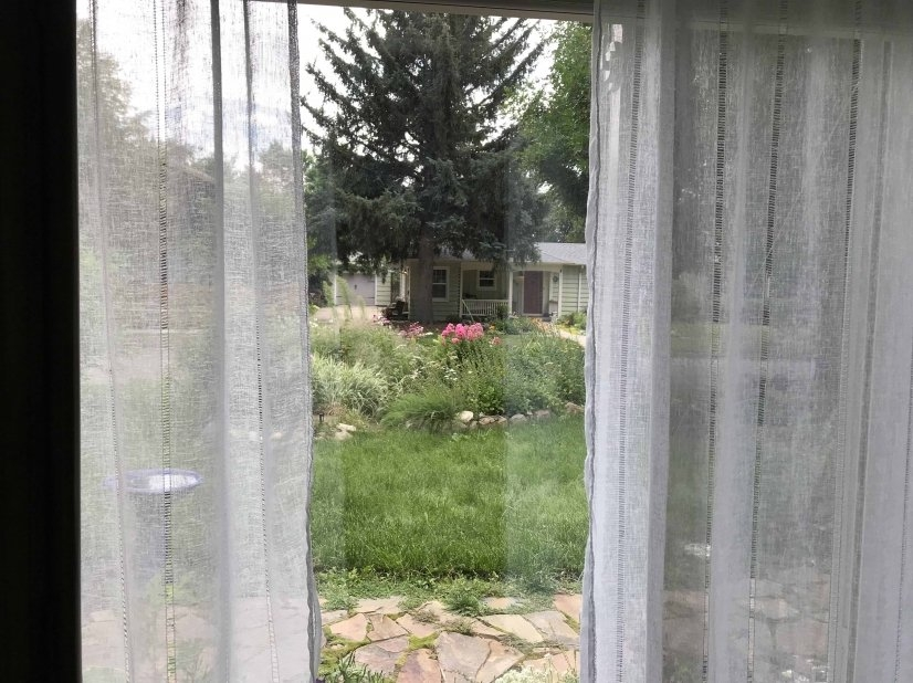 Garden Room: Looking out window at the beautiful view.
