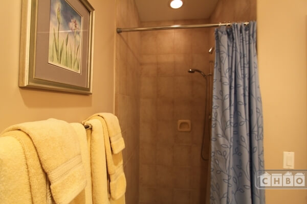 Large walk in shower,,heated floors...