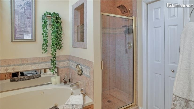 Master Whirlpool tub and shower