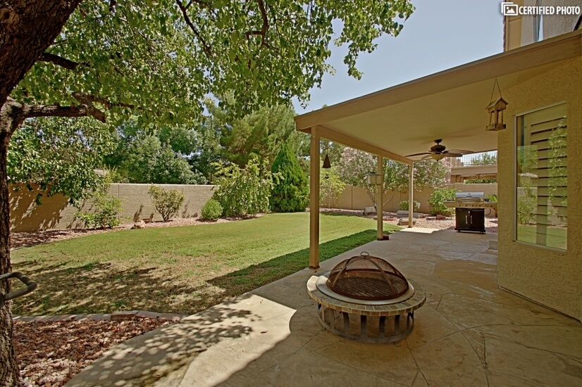 Shade Trees and Fire Pit