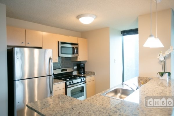 image 10 furnished 1 bedroom Apartment for rent in Loop, Downtown