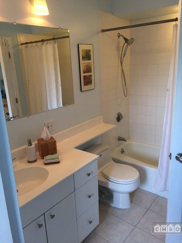 image 4 furnished 1 bedroom Apartment for rent in South End, Boston Area