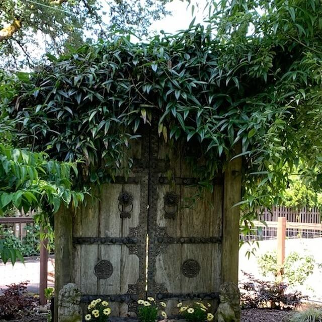 antique Chinese temple doors in backyard