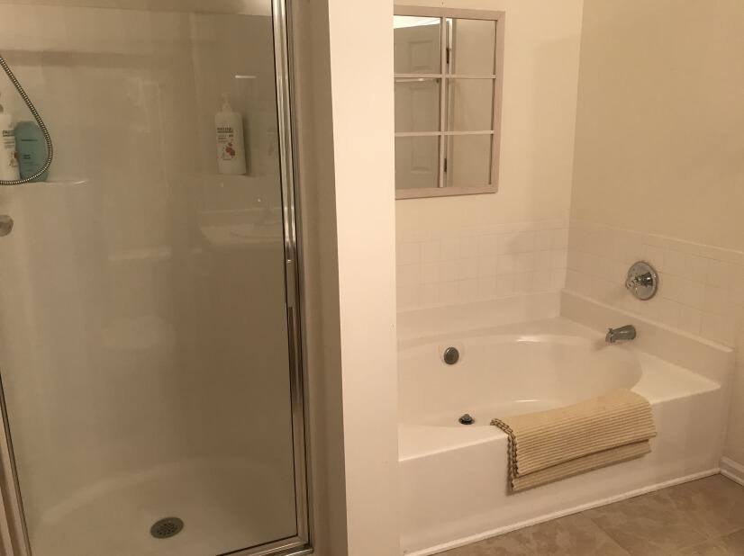 Master Bath Shower/Bath