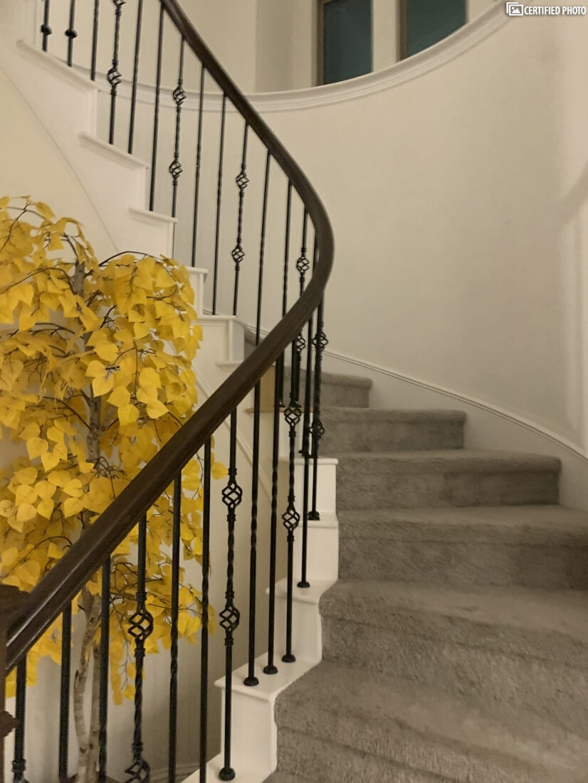curved stair case beautifully architected