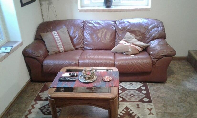 Den leather sofa