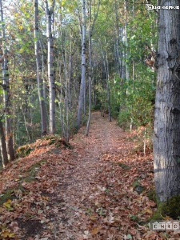 Miles of trails to enjoy!