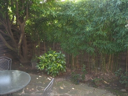 image 13 furnished 2 bedroom Townhouse for rent in Burlingame, San Mateo (Peninsula)