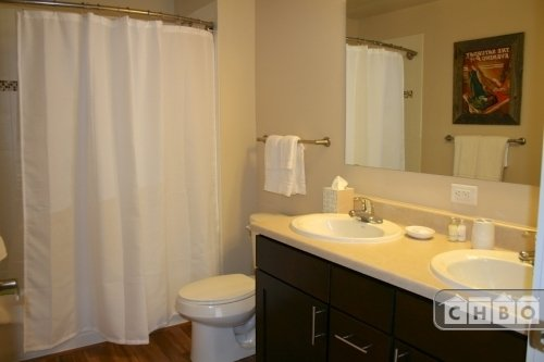 image 9 furnished 1 bedroom Apartment for rent in Fort Collins, Larimer (Fort Collins)