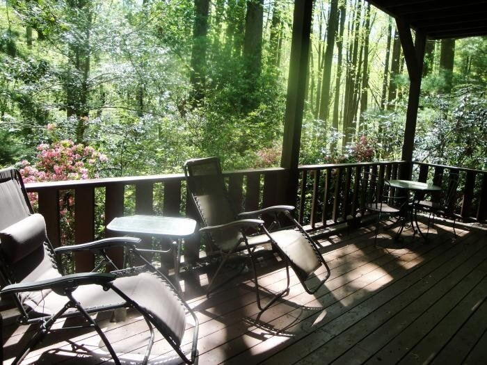 Deck off living room overlooking 3 acres of woods