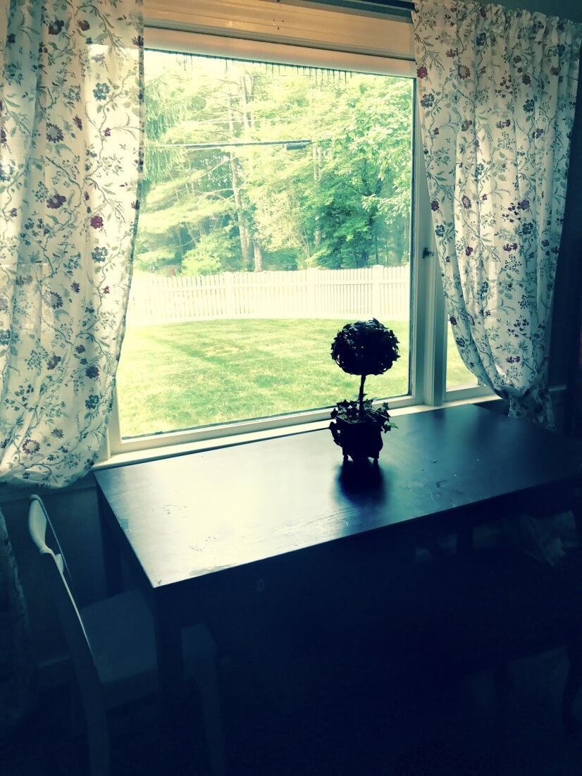 image 9 furnished 3 bedroom House for rent in Medway, Boston Outskirts