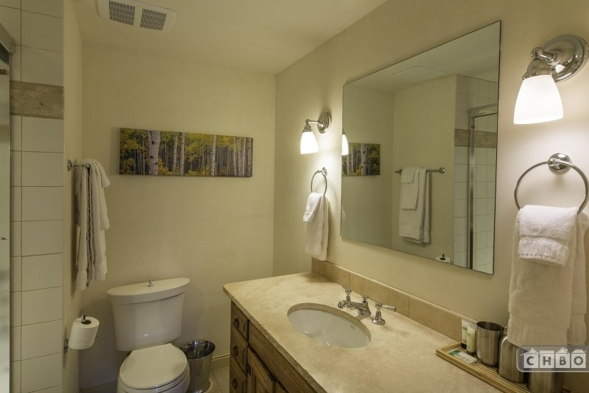 image 9 furnished 3 bedroom Townhouse for rent in Telluride, San Miguel (Telluride)
