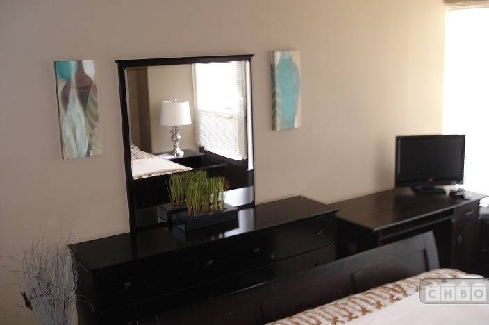 image 3 furnished 1 bedroom House for rent in Loop, Downtown