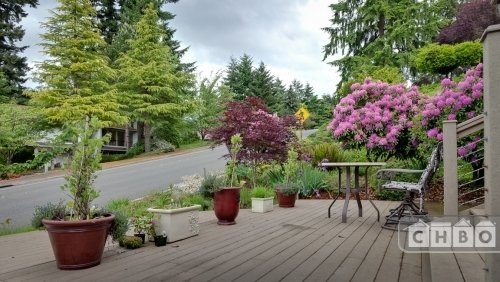 image 12 furnished 1 bedroom Apartment for rent in Bellevue, Seattle Area