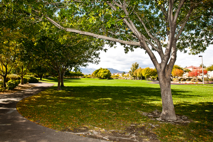 Huge park located 1 block from the house