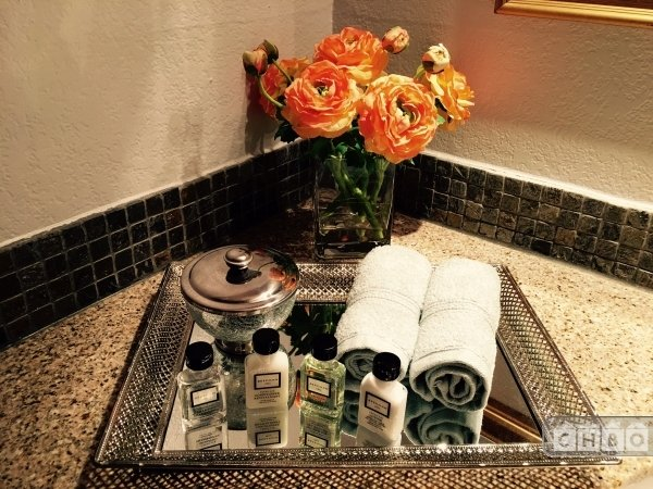 Luxury Hotel Style Amenities upon arrival