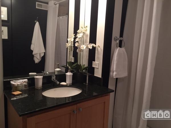 image 5 furnished 1 bedroom Townhouse for rent in Bridgeport, South Side