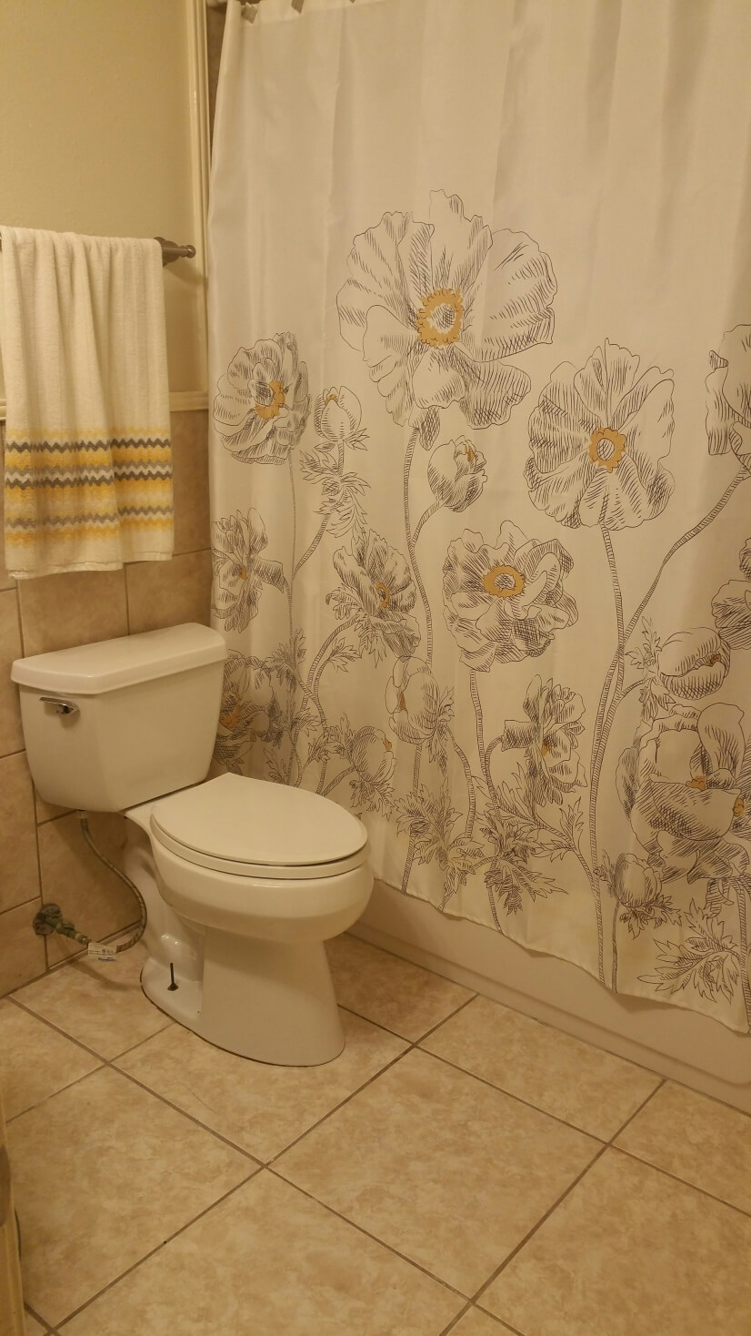 Upstairs guest tub