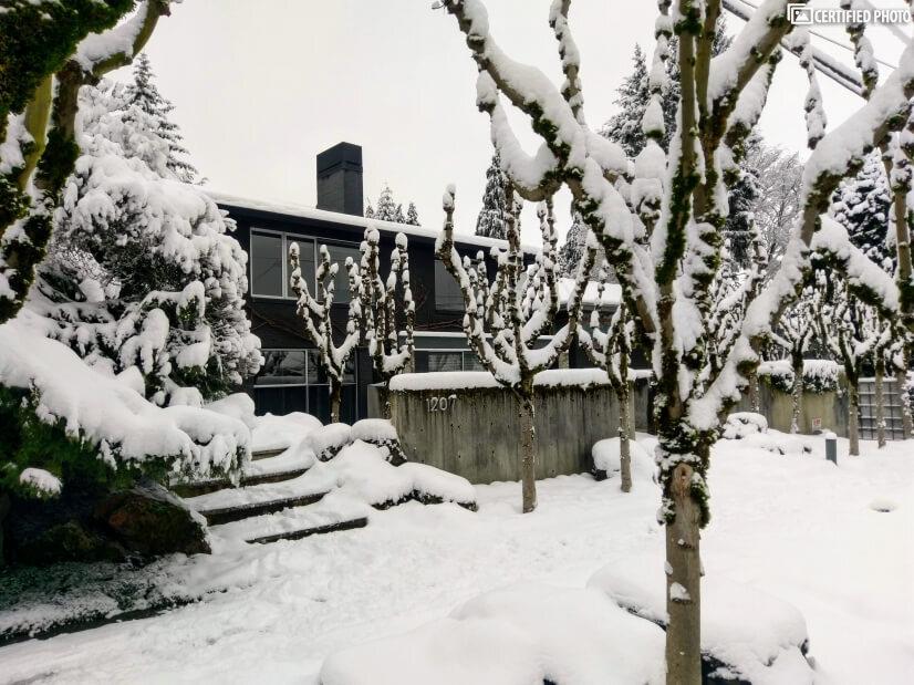 Winter Wonderland 2019 - 2