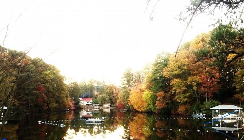 Lake View #1
