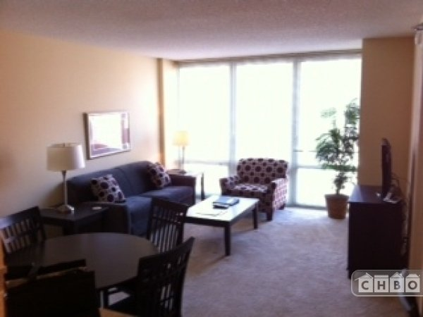image 2 furnished 1 bedroom Apartment for rent in Schaumburg, North Suburbs