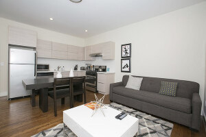 Fully Furnished Executive Homes