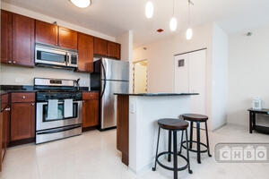Full-Amenity Streeterville Highrise