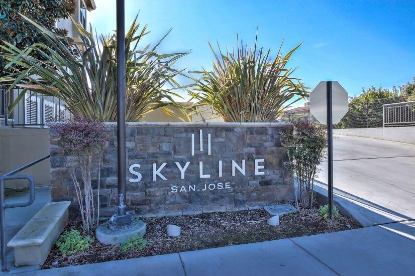 Skyline Luxury Condominium High-rise