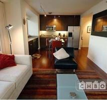 SOMA Executive Luxury Penthouse