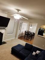 Living room (65 OLED LG TV)