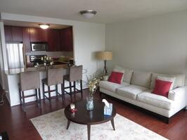 Exclusive Suites 1 BED 30 E. Huron 3405