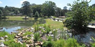 Lake Frontal Property